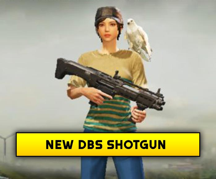 Download Pubgm Beta 0.17.0 new DBS Shotgun